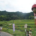 9/23(土)、9/24(日)飛鳥光の回廊&彼岸花祭りが開催されます!!