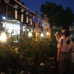奈良で除夜の鐘♪