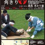 奈良公園で鹿の角切が行われています