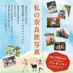 私の奈良旅写真